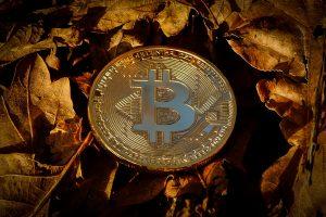Bitcoin als Münze - Beispielsbild
