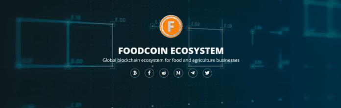 Webseite FoodCoin