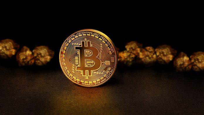 Wert Bitcoin