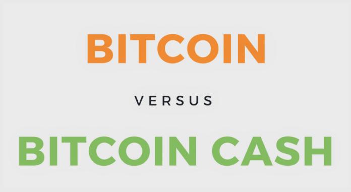 Infografik: Bitcoin versus Bitcoin Cash