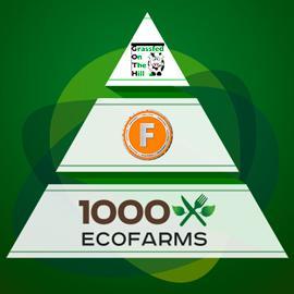 FoodCoin & 1000EcoFarms.