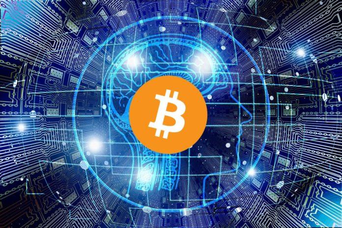 BItcoin Wal bewegt 48.000 BTC für 4 Cent Gebühren - Coincierge