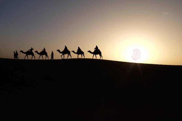 wie man in saudi-arabien in bitcoin investiert petro coin die erste staatliche kryptowährung
