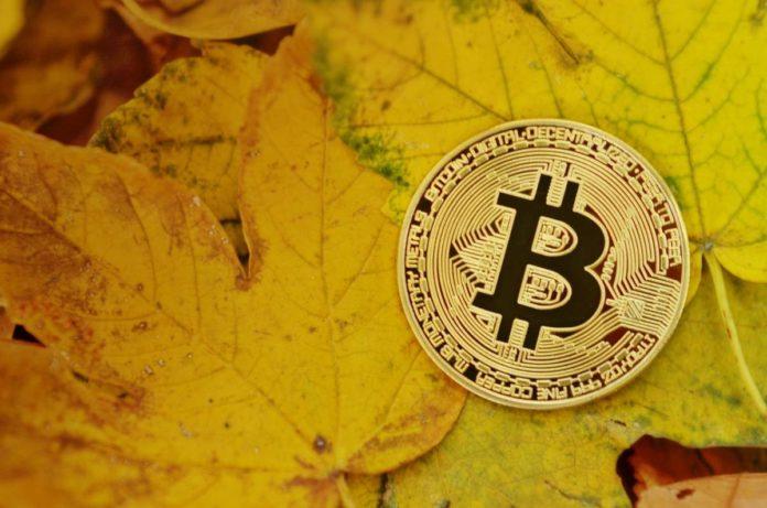 Der Krypto-Markt war noch nicht bereit für BTC Futures - Coincierge