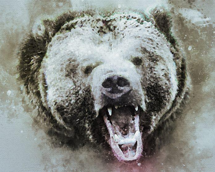 BTC und Krypto Bärenmarkt könnte neue Ausmaße erreichen - Coincierge