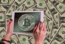 BTC Trader Willy Woo über seine Indikatoren und die Rolle der Altcoins - Coincierge