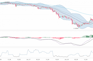 Cryptowatch Chart Analyse