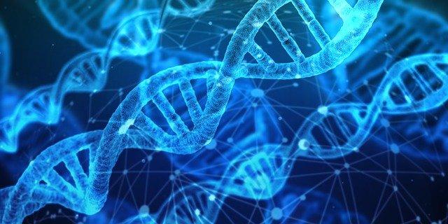 Biotech Aktien Kaufen DNA