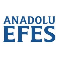 Anadolu Efes Birck Logo