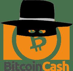 Bitcoin Cash Casinos Sicherheit