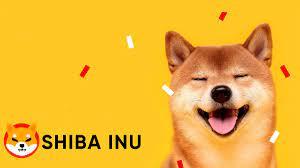 Was ist Shiba Inu?