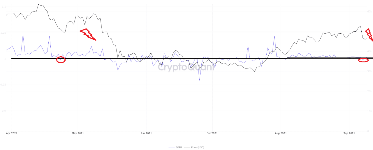 The BTC SOPR for the past six months
