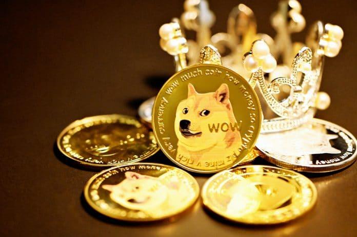 Dogecoin bereitet sich auf die 1.000%-Rallye vor – Bullen peilen 0,50 Dollar an