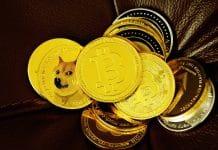 Warum Bitcoin, Ethereum und Dogecoin diese Woche so stark gestiegen sind
